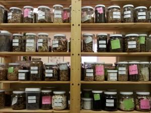 herb jarscropped